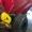 Розкидач мінеральних добрив МВУ-6, МВУ-8, МВУ-5 - Изображение #3, Объявление #1491623