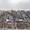 Продам базу отдыха на берегу Азовского моря #1677355