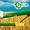 Транспортер зерна (шнековый погрузчик) - Деллиф #1686402