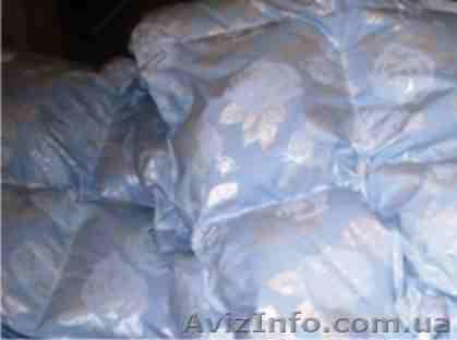 замена и реставрация подушек на диване