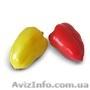 Семена сладкого перца YANIKA F1 / ЯНИКА F1 (Китано)