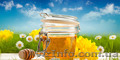 Закупаем мед оптом без антибиотика
