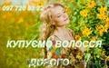 Купуємо волосся. Продати волосся дорого. Вся Україна.
